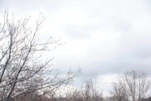 В Самарской области похолодаетдо минус 17 °C