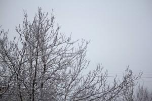 20-градусные морозы не спешат покидать Самарский регион