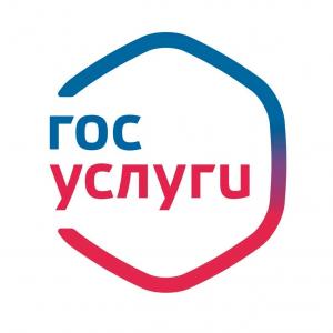 Самарская область занимает первое место в ПФО по количеству пользователей единого портала Госуслуг