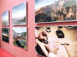 Самарцам покажут фотовыставку, посвященную природе старинного региона Швейцарии - Невшатель