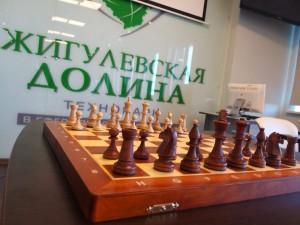 Всероссийский турнир по быстрым шахматам пройдет в Жигулевской долине