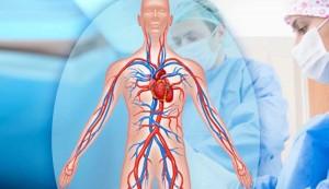 Сердечно-сосудистые заболевания в наше время не редкость. Все понимают, что их лечение требует особого внимания.