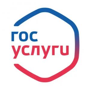 Самарская область стала лидером в ПФО по количеству пользователей портала госуслуг