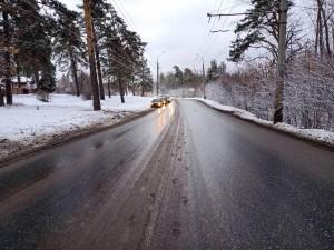 Тольяттинская автомобилистка протаранила дерево