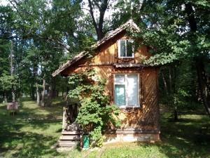 Самарская область - в топ-5 самых популярных в ПФО для отдыха в санаториях прошедшей осенью