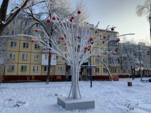 В Самаре яблоки на деревьях зимой – не миф, а реальность.