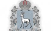В 2020 году НКО Самарской области получили президентские гранты на рекордную сумму