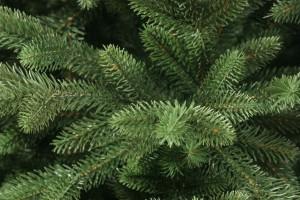 В Роскачестве дали рекомендации по выбору искусственных елок