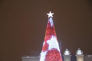 В новом Дворце спорта в Самаре установят первую в его истории новогоднюю ёлку