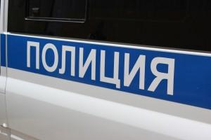 Тольяттинец, не боясь полицейских, провез мимо них на садовой тележке украденные металлические листы
