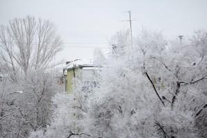 В Самарской области обещают сильный снегопад