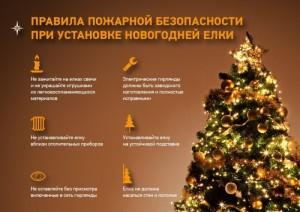 Одни из главных символов новогодних и рождественских праздников это украшенная елка и различные пиротехнические изделия.
