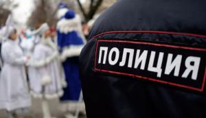 """""""Деды Морозы и Снегурки попадаются на хулиганстве или нарушении общественного порядка, как правило, в ресторанах, кафе и барах."""""""