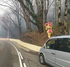 В Сочи оперативные службы уже второй день пытаются потушить природный пожар площадью 5,5 га.