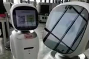 Роботы шумели и сердились друг на друга.