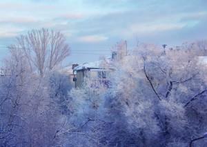 Жителей Самарской области ожидает тридцатиградусный мороз