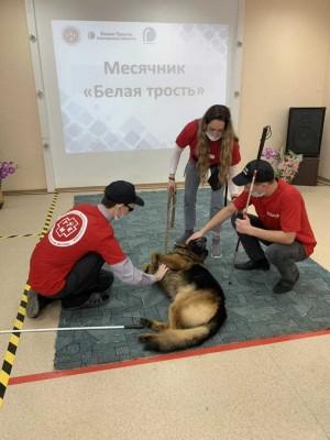 Кинологи самарской ИК-29 устроили мастер-класс, где слабовидящие студенты-медики узнали об уходе за собаками