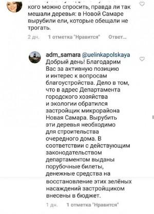 В администрации Самары сообщили о том, зачем были вырублены крупные ели в поселке Мехзавод