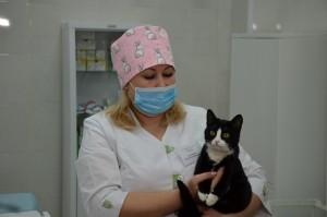 Сегодняв Самарском государственном аграрном университете открылась ветеринарная клиника, оснащенная по последнему слову техники.