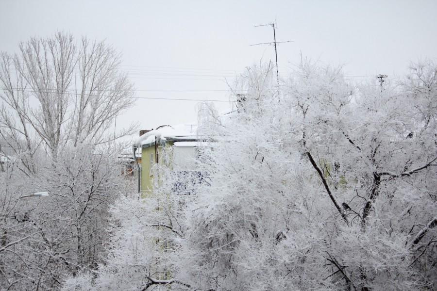 Аномальный мороз пришел в Самарскую область