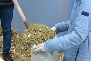 Щепа, полученная в ходе переработки елки, применяется для садово-хозяйственных нужд, а также, как естественный подстил для животных.