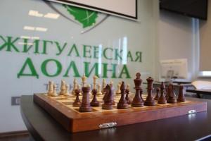 Жителей региона приглашают на открытие шахматной гостиной в технопарке Жигулёвская долина»
