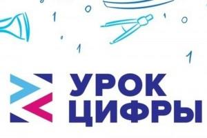 Самарская область вошла в тройку лидеров в России по количеству участников в февральском всероссийском «Уроке цифры»