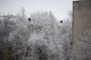 Весна откладывается: россиян предупредили о вторжении морозов из Арктики