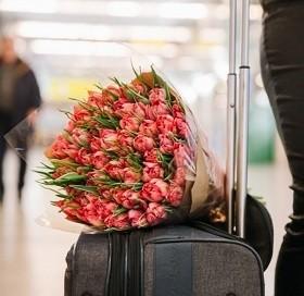 Цветы, которые несут в себе опасность попадания различных насекомых на территорию России, выявляются и подлежат уничтожению.