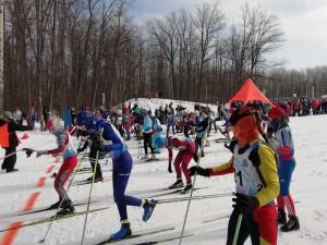 На дистанции 3, 5 и 10 км свободным стилем вышло около 400 человек.