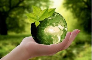 Конкурс направлен на развитие экологического воспитания и просвещения населения.