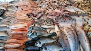 Рынок для рыбаков появится на трассе в Самарской области