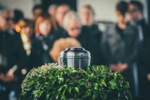 Новую площадку для крематория ищут ни один год, но окончательный выбор пока не сделан.