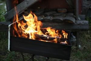 Никаких шашлыков в лесу: противопожарный режим заработает в Самаре с 5 апреля