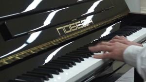 Воспитанники хоккейных клубов губернии получат 140 клюшек. 52 пианино - детскиешколы искусств региона.