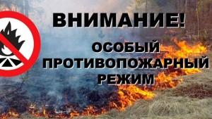В связи с этим при наступлении 4 и 5 классов пожарной опасности введены ограничения на въезд транспортных средств и пребывание граждан в лесах.