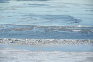 На Волге возле Самары тронулся лёд