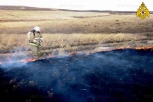 В регионе еще не везде сошел снег, а пожарные подразделения уже начали выезжать на ликвидацию палов сухой травы.