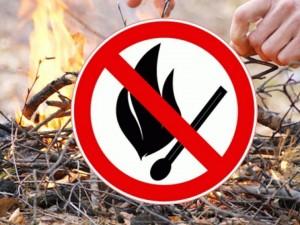 При наступлении 4 и 5 классов пожарной опасности введены ограничения на въезд транспортных средств и пребывание граждан в лесах.
