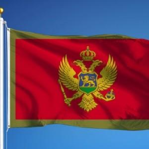 Власти Черногории продлили безвизовый режим для граждан России