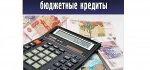 Был рассмотрен вопрос по предоставлениюбюджетного кредита Кинелюна проектные работы, связанные с реконструкцией очистных сооружений в поселках Лебедь и Усть-Кинельский.