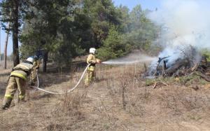 По легенде учений низовой пожар охватил 10гектаров лесного фонда. Огнеборцы за считанные минуты ликвидировали учебный пожар.