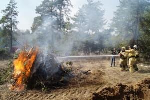 В Самарской области тренировались тушить лесные пожары