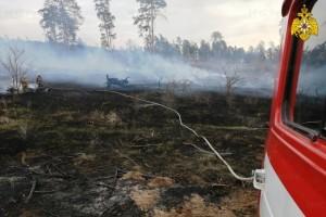 Ежедневно сотрудники противопожарной службы выезжают на тушение загоревшейся сухой травы, стерни и мусора.
