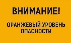 Оранжевый  уровень опасности объявили в Самарской области из-за ветра