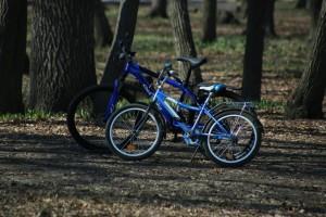 В Самаре растет популярность горных велосипедов