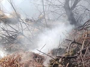 Решение принято губернаторомДмитрием Азаровым 19 апреля.Причина – рост пожаров, в том числе, в дачных массивах.