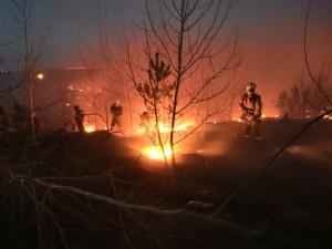 Ежедневно пожарно-спасательные подразделения выезжают на тушение загоревшейся сухой травы, стерни, мусора и низовых лесных пожаров.