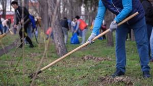 Самарская область примет участие во Всероссийском субботнике. Всероссийский субботник будет посвящен теме городской среды и экологии.