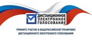 Сегодня начался прием заявлений на участие в Общероссийской тренировке по применению дистанционного электронного голосования.